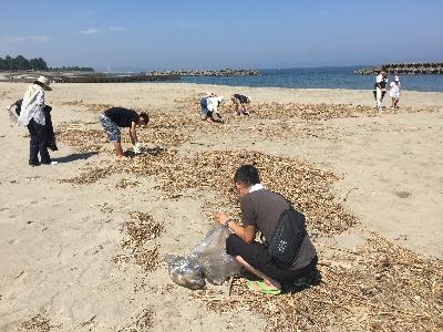 海岸清掃活動2016