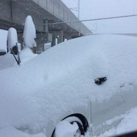 富山は記録的大雪です!